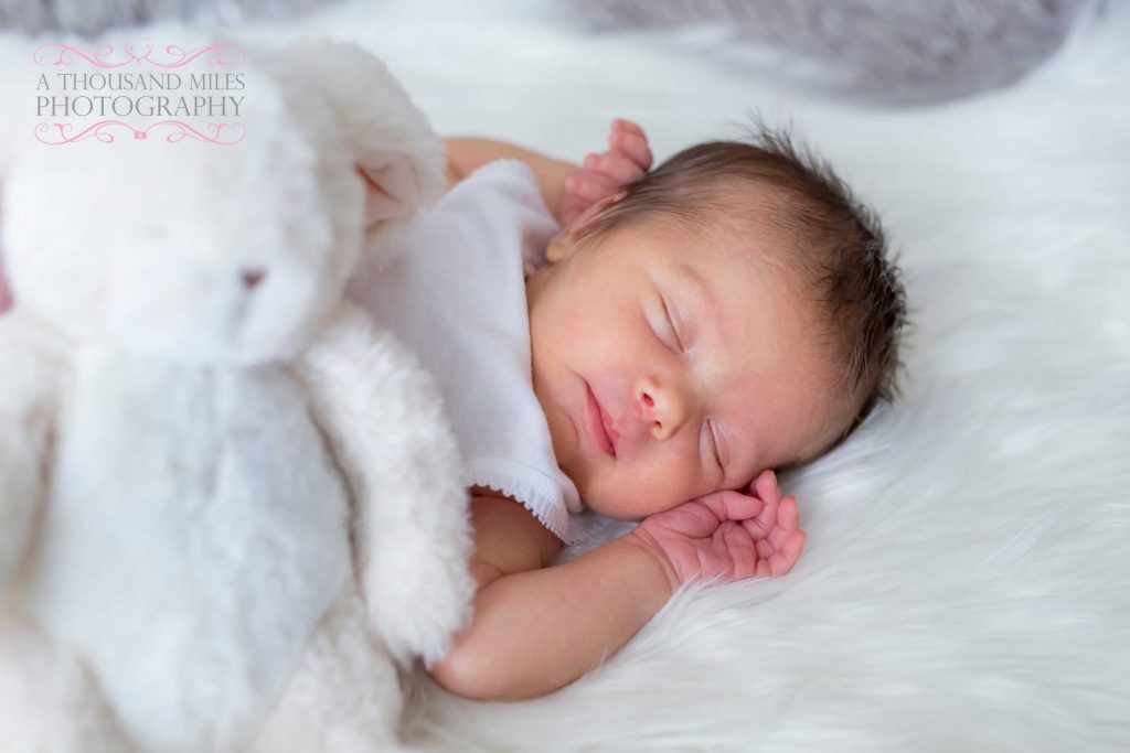 newborn photo prices